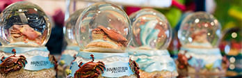 Close up of beach themed snow globes.